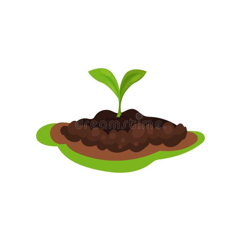Μικρός πράσινος νεαρός βλαστός στο έδαφος χώμα φυτών Θέμα φύσης Επίπεδο διάνυσμα για τη infographic αφίσα για την καλλιέργεια ή διανυσματική απεικόνιση
