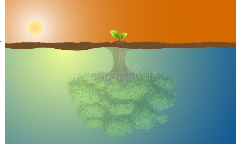 Μικρό δέντρο και μεγάλη αντανάκλαση απεικόνιση αποθεμάτων