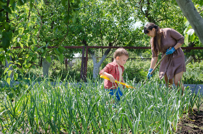 Μικρό αγόρι που βοηθά τη μητέρα του στον κήπο στοκ εικόνες με δικαίωμα ελεύθερης χρήσης