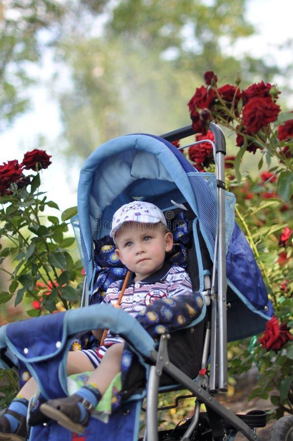 Μικρό αγόρι στο καροτσάκι στοκ εικόνα με δικαίωμα ελεύθερης χρήσης
