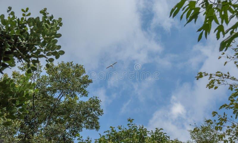 Μικρό αεροπλάνο αναζήτησης που επισημαίνεται στον ουρανό στοκ εικόνα