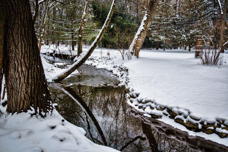 Μικρό δασόβιο ρεύμα με το χιόνι στοκ εικόνες