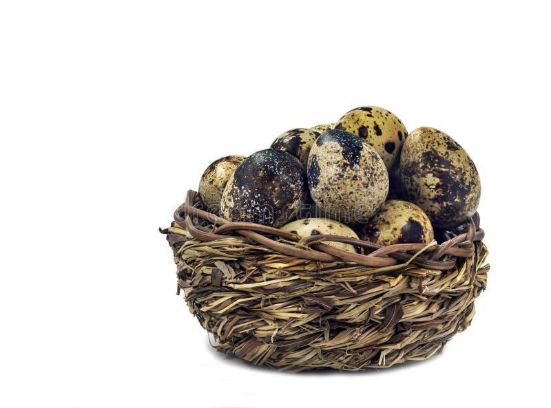 Μικρό καλάθι με τα αυγά νησοπέρδικων στοκ εικόνα