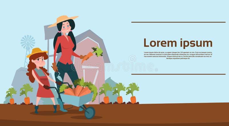 Μικρό καροτσάκι λαβής κορών αγροτών κοριτσιών με τη συγκομιδή λαχανικών απεικόνιση αποθεμάτων