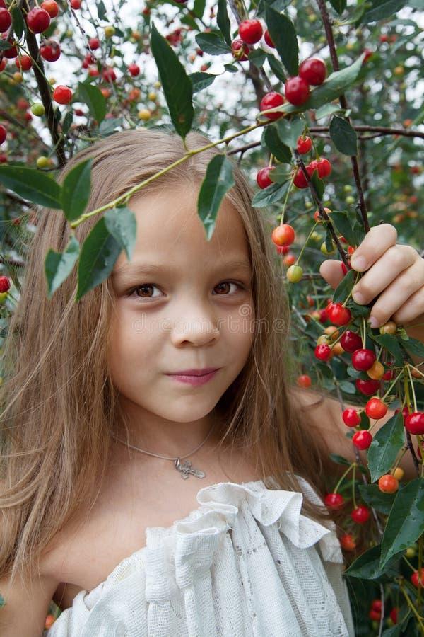 Μικρό κορίτσι με ένα δέντρο κερασιών στοκ εικόνα με δικαίωμα ελεύθερης χρήσης