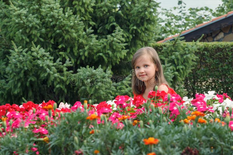 Μικρό κορίτσι με μακριά ξανθά μαλλιά με κόκκινο φόρεμα που τρίζει πίσω από τα λουλούδια στοκ φωτογραφία με δικαίωμα ελεύθερης χρήσης