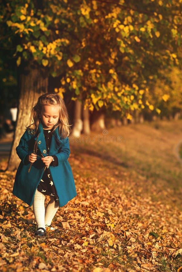 Μικρό κορίτσι μόδας σε ένα μπλε παλτό που περπατά στο πάρκο φθινοπώρου Μόδα παιδιών φθινοπώρου Άνθρωποι, έννοια τρόπου ζωής και φ στοκ εικόνες με δικαίωμα ελεύθερης χρήσης