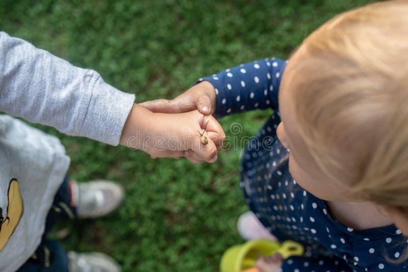 Μικρό κορίτσι που εξετάζει ένα σαλιγκάρι σε ετοιμότητα αδελφών της στοκ φωτογραφία με δικαίωμα ελεύθερης χρήσης
