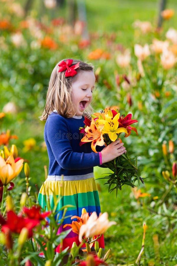 Μικρό κορίτσι που επιλέγει lilly τα λουλούδια στοκ φωτογραφία με δικαίωμα ελεύθερης χρήσης