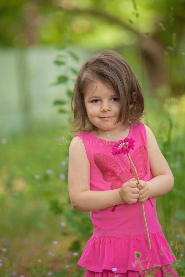 Μικρό κορίτσι, που κρατά το ενιαίο λουλούδι gerber στο πάρκο στοκ φωτογραφία