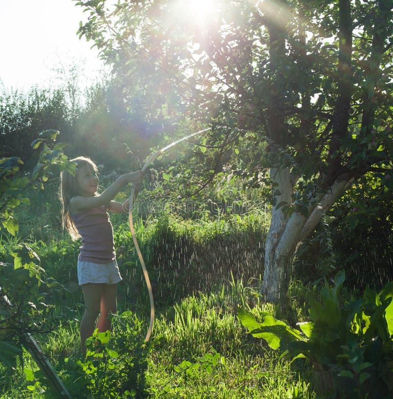 Μικρό κορίτσι που ποτίζει τις εγκαταστάσεις στον κήπο στοκ φωτογραφίες
