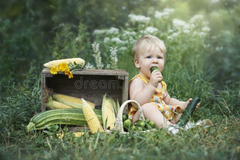Μικρό κορίτσι που τρώει το μόνο αυξημένο αγγούρι στοκ φωτογραφία