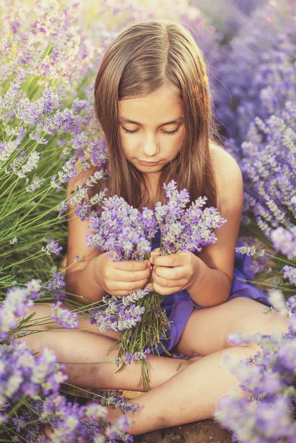 Μικρό κορίτσι σε έναν τομέα lavender στοκ φωτογραφίες