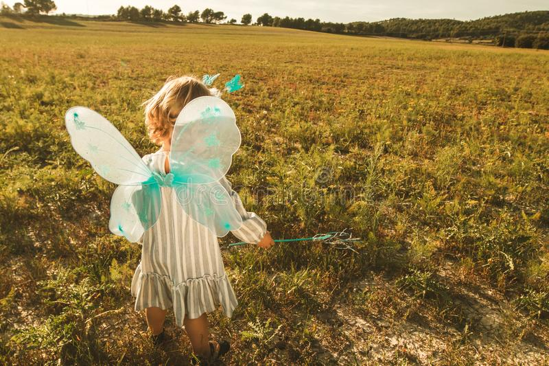 Μικρό κορίτσι σε ένα κοστούμι πεταλούδων με τα φτερά στον τομέα στοκ εικόνες