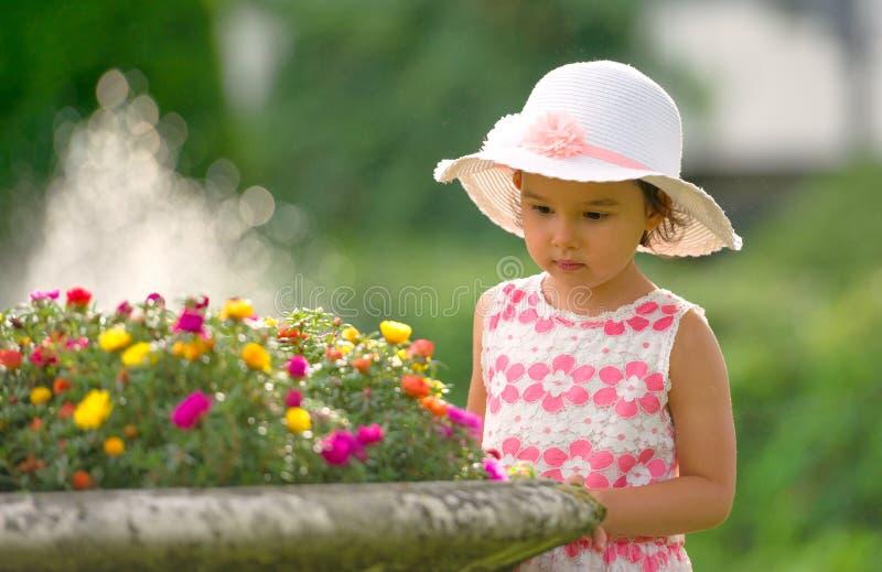 Μικρό κορίτσι στα λουλούδια θαυμασμού κήπων στοκ φωτογραφία
