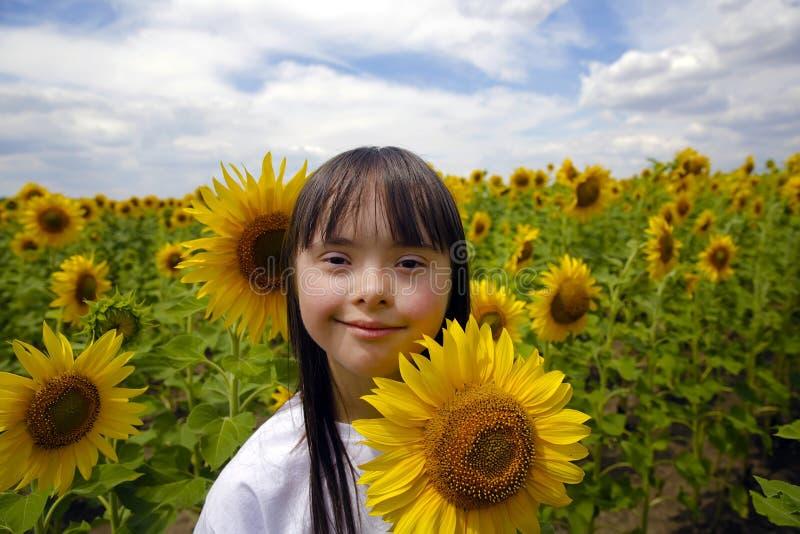 Μικρό κορίτσι στον τομέα ηλίανθων στοκ εικόνα