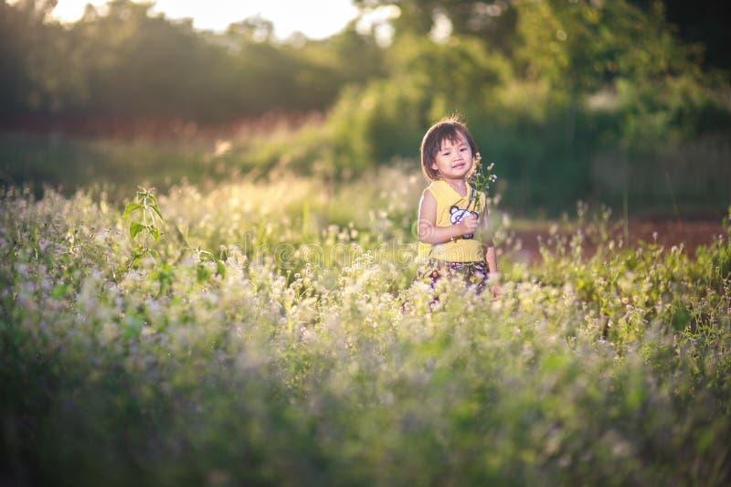 Μικρό κορίτσι στο παιχνίδι σε ένα πάρκο ρεικιών στοκ φωτογραφία