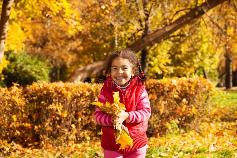 Μικρό κορίτσι της Νίκαιας με τη δέσμη των κίτρινων φύλλων στοκ εικόνες