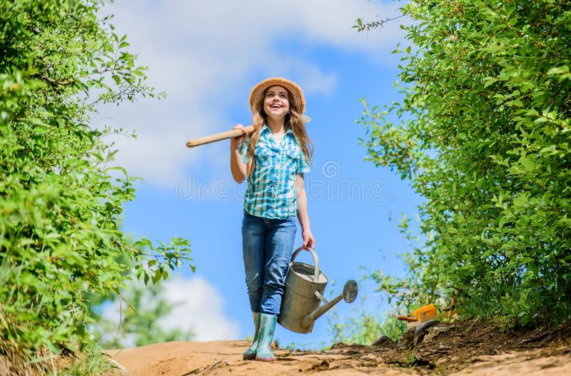Μικρό κορίτσι της Farmer τα εργαλεία, το φτυάρι και το πότισμα κήπων μπορούν ηλιόλουστος υπαίθριος εργαζομένων παιδιών οικογενεια στοκ εικόνες