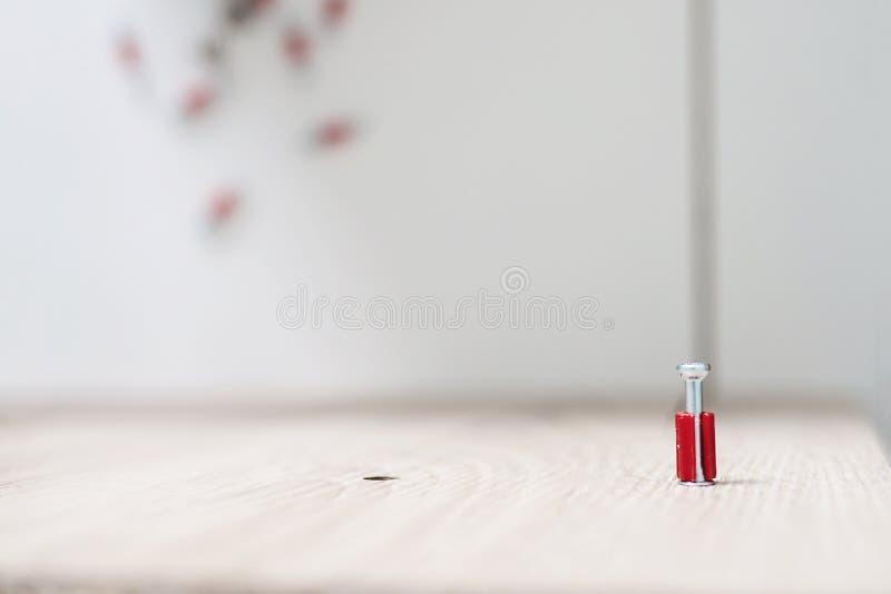 Μικρό κόκκινο καρύδι συναρμολογήσεων επίπλων στοκ εικόνες