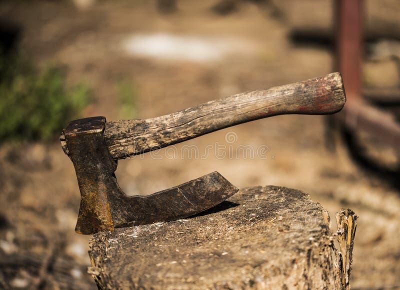 Μικρό ξύλινο τσεκούρι για τη δολοφονία των κοτόπουλων στοκ εικόνα με δικαίωμα ελεύθερης χρήσης