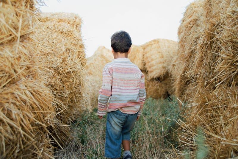 Μικρό παιδί κοντά στο δέμα σανού στον τομέα Παιδί στη γεωργική γη Κίτρινη χρυσή συγκομιδή σίτου το φθινόπωρο Φυσικό τοπίο επαρχία στοκ εικόνες