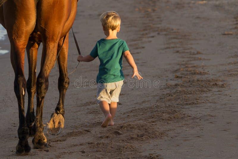 Μικρό παιδί που περπατά με ένα άλογο στην παραλία υποστηρίξτε την όψη διάστημα αντιγράφων στοκ φωτογραφία με δικαίωμα ελεύθερης χρήσης