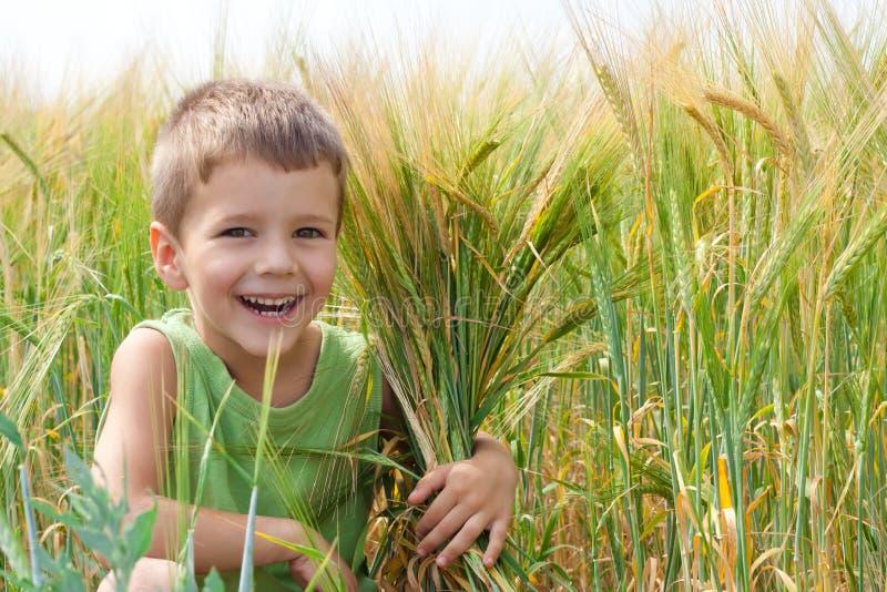 Μικρό παιδί σε ένα πεδίο σίτου στοκ φωτογραφία