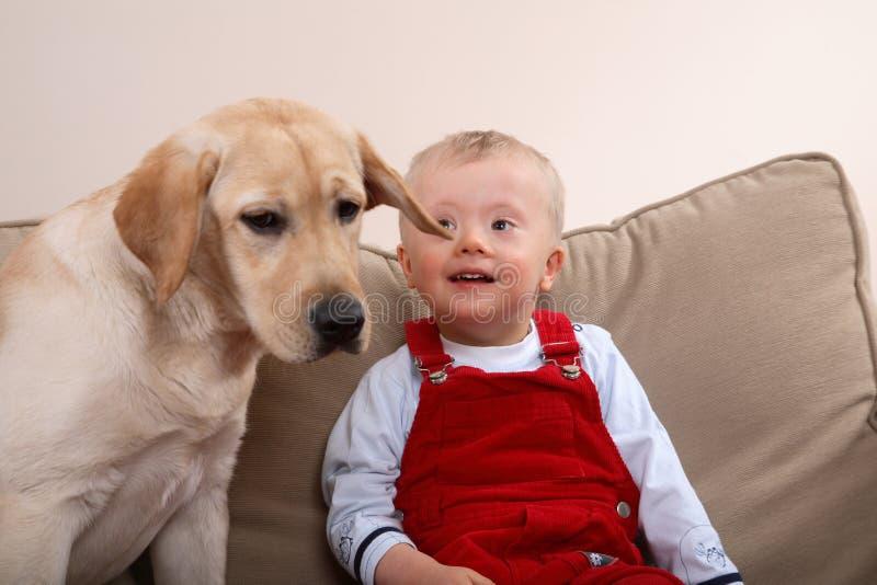μικρό παιδί σκυλιών στοκ φωτογραφία