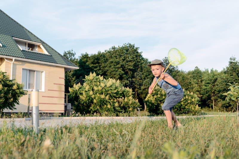 Μικρό παιδί που έχει τη διασκέδαση που πιάνει τα έντομα στοκ φωτογραφίες με δικαίωμα ελεύθερης χρήσης