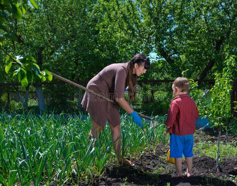 Μικρό παιδί που βοηθά τη μητέρα του στον κήπο στοκ εικόνα