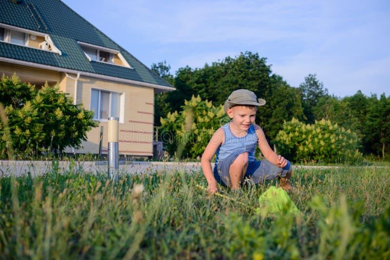 Μικρό παιδί που πιάνει τα έντομα με ένα δίχτυ στοκ φωτογραφίες με δικαίωμα ελεύθερης χρήσης