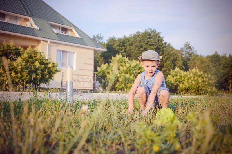 Μικρό παιδί που πιάνει τα έντομα με ένα δίχτυ στοκ εικόνα
