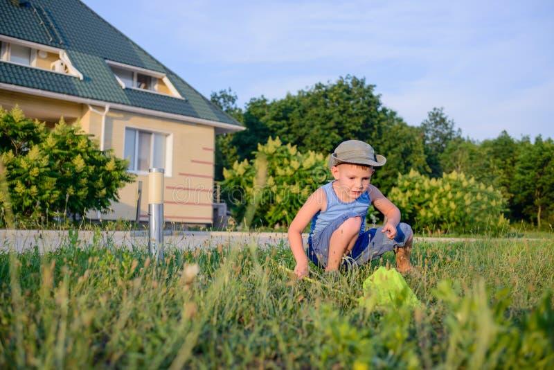 Μικρό παιδί που πιάνει τα έντομα με ένα δίχτυ στοκ εικόνες