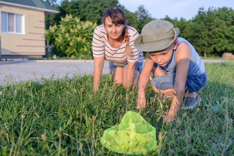 Μικρό παιδί που πιάνει τα έντομα με τη μητέρα του στοκ εικόνες με δικαίωμα ελεύθερης χρήσης