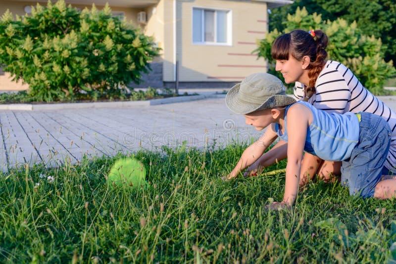 Μικρό παιδί που πιάνει τα έντομα με τη μητέρα του στοκ φωτογραφίες