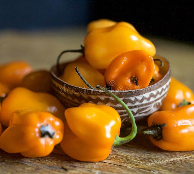 Μικρό πορτοκαλί habanero chiles στοκ φωτογραφίες με δικαίωμα ελεύθερης χρήσης
