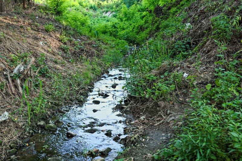 Μικρό ρεύμα νερού βουνών, που διατρέχει των ξύλων στοκ φωτογραφία