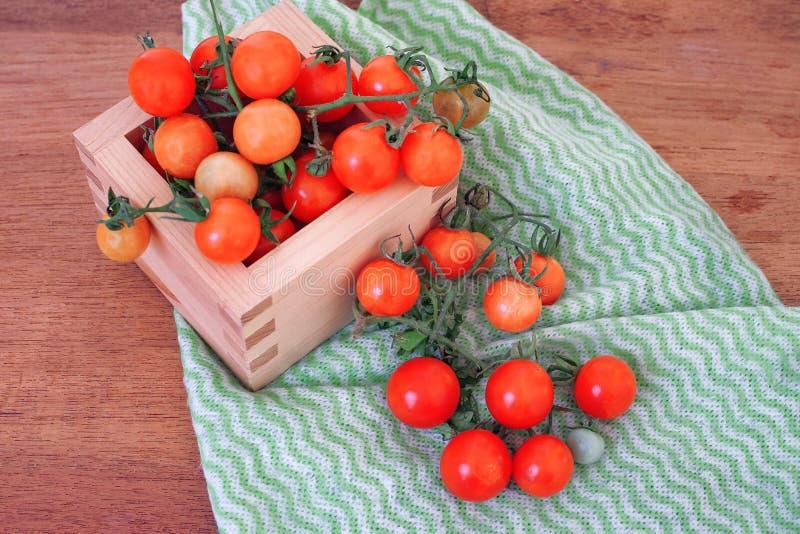 Μικρό χύσιμο ντοματών από το ξύλινο κιβώτιο r στοκ εικόνα με δικαίωμα ελεύθερης χρήσης
