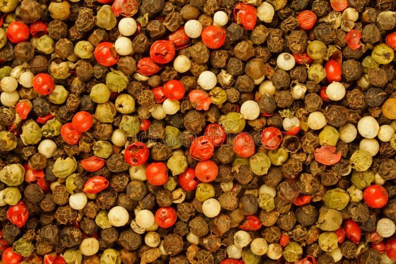 μικτά ανασκόπηση peppercorns στοκ εικόνες με δικαίωμα ελεύθερης χρήσης