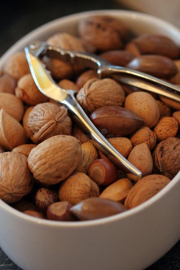 Download μικτά καρύδια στοκ εικόνα. εικόνα από cashew, καρύδια, εισαγωγή - 61649