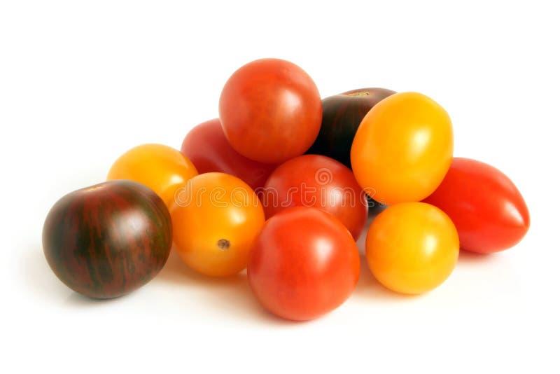 μικτές ντομάτες στοκ εικόνα