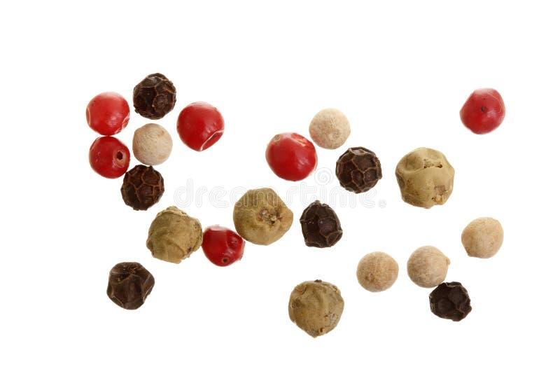 Μικτός των πιπεριών καυτό, κόκκινο, μαύρο, άσπρο και πράσινο πιπέρι που απομονώνεται στο άσπρο υπόβαθρο Τοπ όψη στοκ φωτογραφίες με δικαίωμα ελεύθερης χρήσης