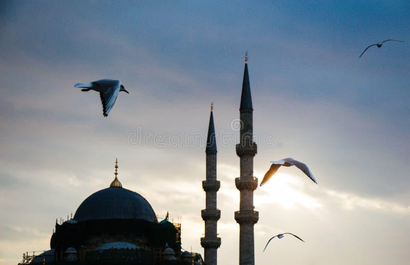 Μιναρές των οθωμανικών μουσουλμανικών τεμενών κατά την άποψη στοκ εικόνες