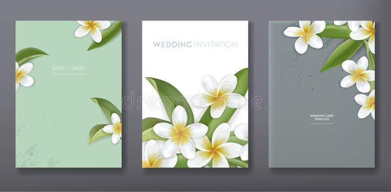 Μινιμαλιστικό floral τροπικό καθιερώνον τη μόδα σχέδιο προτύπων καρτών πρόσκλησης χαιρετισμού ή γάμου, σύνολο αφίσας, ιπτάμενο, φ ελεύθερη απεικόνιση δικαιώματος