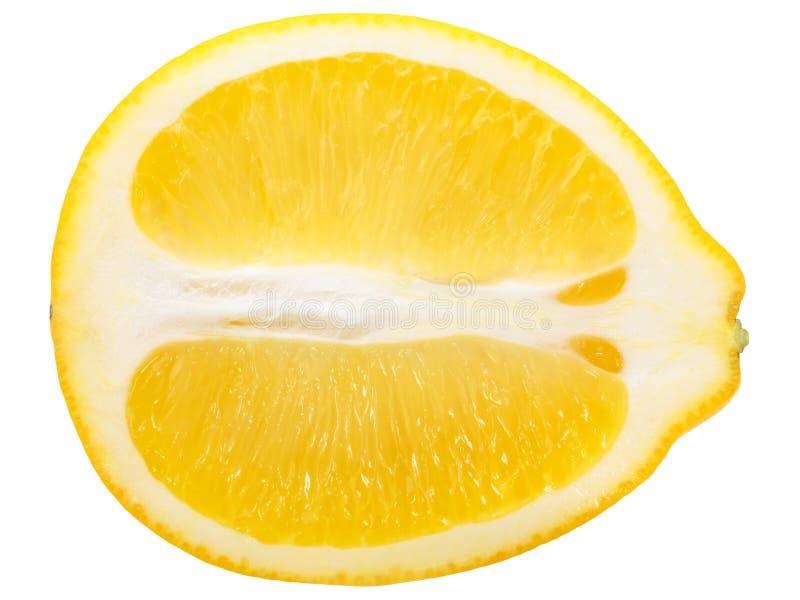 Μισή φέτα λεμονιών, πορείες στοκ εικόνες