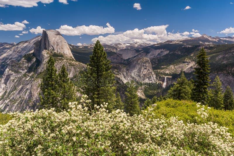 Μισοί θόλος και κοιλάδα Yosemite με τα λουλούδια στην άνθιση στοκ φωτογραφία με δικαίωμα ελεύθερης χρήσης