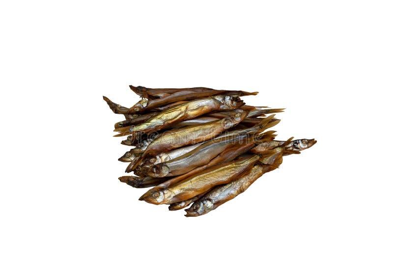 Μισό-καπνισμένη capelin ομορφιά ψαριών στοκ εικόνες