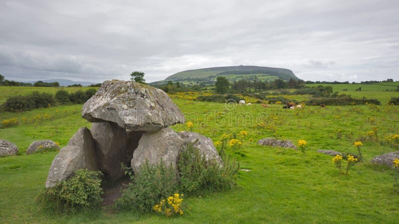 Μνημείο βράχου στον πράσινο τομέα με τις αγελάδες και βουνό στην Ιρλανδία στοκ φωτογραφία με δικαίωμα ελεύθερης χρήσης