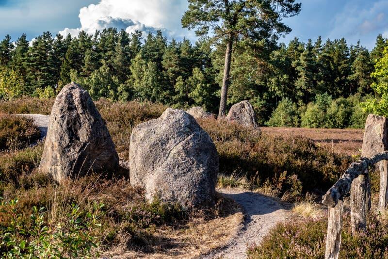 Μνημείο μεγαλιθικών μνημείων στο γερμανικό τοπίο ρεικιών με τις ανθίζοντας εγκαταστάσεις ερείκης στοκ εικόνα με δικαίωμα ελεύθερης χρήσης
